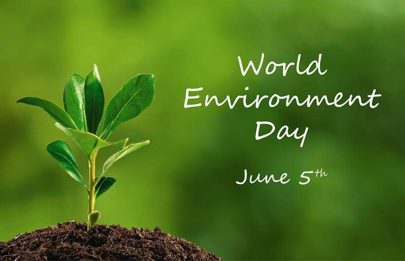 Image result for On June 5, the World Environment protection